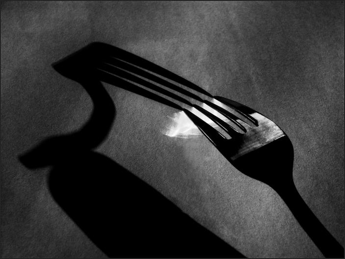 fork-3-BW_Aicardi-700GB